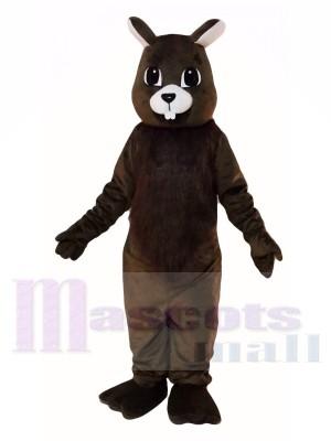 Brown Eichhörnchen Maskottchen Kostüme