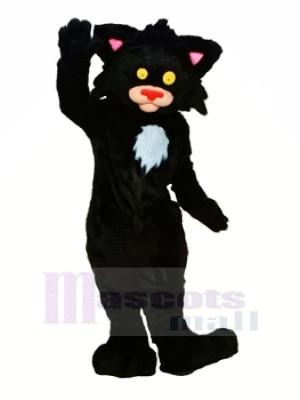 Schwarz Kitty Katze Maskottchen Kostüme Tier