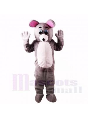 Grau Maus Leicht mit Blau Augen Maskottchen Kostüme Karikatur