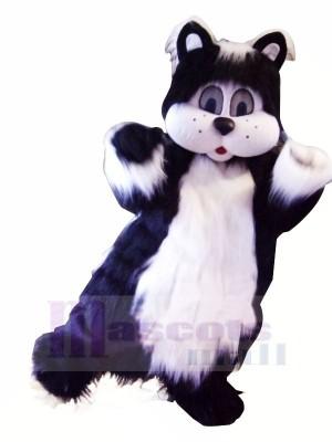 Schwarz und Weiß Katze mit Groß Augen Maskottchen Kostüme Tier