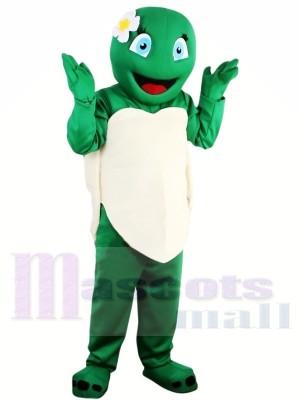 Heiße Verkaufs-Mädchen-grüne Schildkröten-Schildkröten-Maskottchen-Kostüm-Erwachsen-Schulleistung