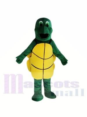 Kleine grüne Schildkröte Maskottchen Kostüme