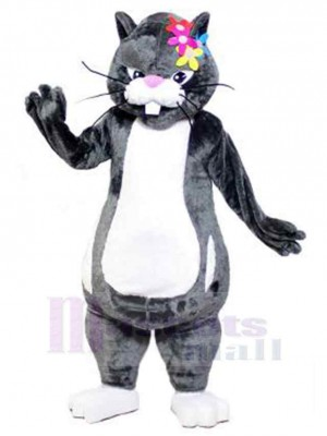 Katze maskottchen kostüm