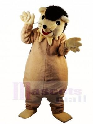 Igel Stachelschwein Maskottchen Kostüme Tier