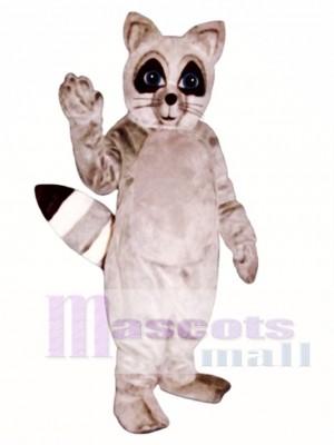 Waschbär Maskottchen Kostüm Tier
