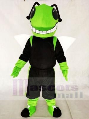 Grünes und schwarzes Hornissen Maskottchen Kostüm Insekt