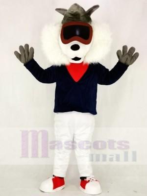 Gasse Katze Maskottchen Kostüme Tier