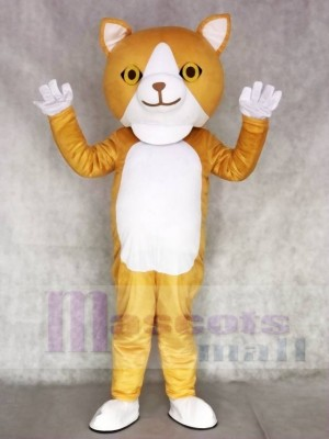 glücklich Katze Maskottchen Erwachsene Kostüme Tier