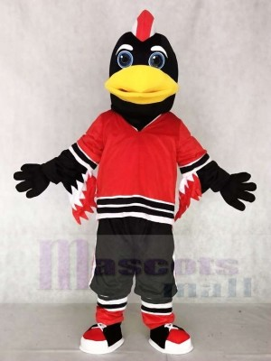 Chicago Blackhawks Tommy Hawk Maskottchen Kostüme