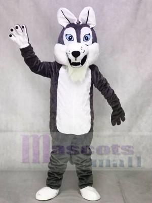 Graue Grau Langhaarige Wolf Maskottchen Kostüme Tier