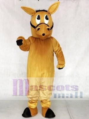 Barney Burro Esel Maskottchen Kostüme Tier