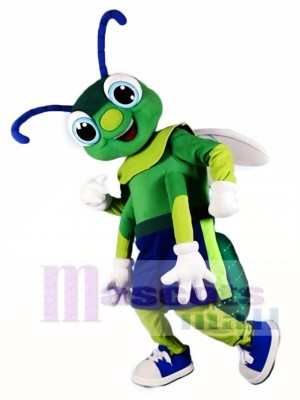 Grünes Leuchtkäfer Maskottchen kostümiert Insekt