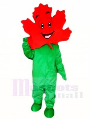 Grüne Körper Ahornblatt Maskottchen Kostüm Anlage