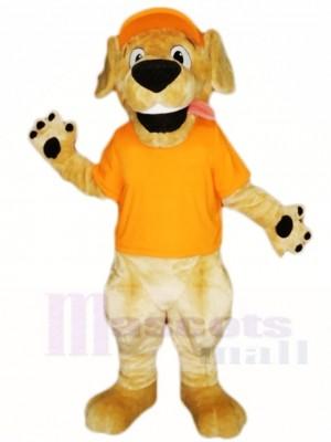 Retriever Hund Mit Orange Hut Und Shirt Maskottchen Kostüme Tier