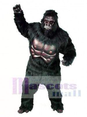 Niedlich Gorilla Maskottchen Kostüm