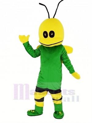 Grün Biene Maskottchen Kostüm Karikatur