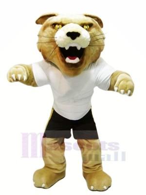 Heftig Wilde Katze mit Weiß T-Shirt Maskottchen Kostüme