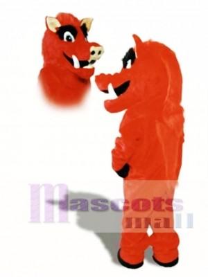 Cute Razorback Wildschwein Schwein Wild Maskottchen Kostüm