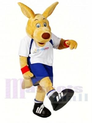 Hochschule Sportlich Känguru Maskottchen Kostüm