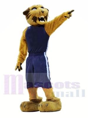 Sport Wilde Katze mit Blau Passen Maskottchen Kostüme Tier