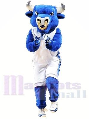 Hochschule Blue Bull Maskottchen Kostüme