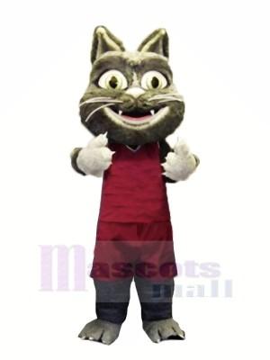 Pelzig Katze mit Passen Maskottchen Kostüme