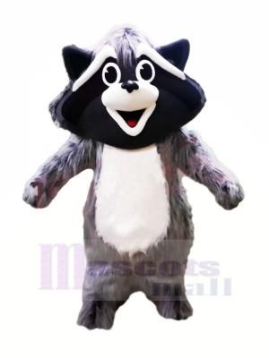 Süß Grau Waschbär Maskottchen Kostüme Tier
