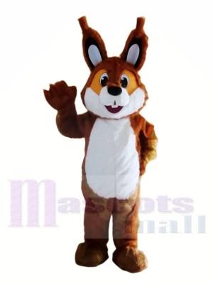 Brown leichte Eichhörnchen Maskottchen Kostüme