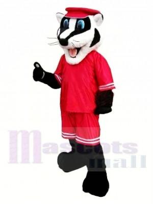Schule Sportlich Dachs Maskottchen Kostüm