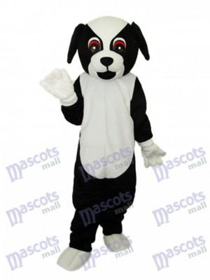 Schwarzer Hund Maskottchen Erwachsener Kostüm Tier