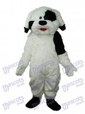 Langhaarige bunte Hund Maskottchen Erwachsene Kostüm Tier