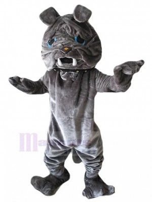 Graues Fell Sharpei Hundemaskottchen-Kostüm mit blauen Augen Tier
