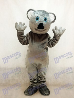 Nettes graues Koala Bärn Maskottchen Kostüm