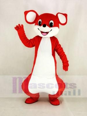 Niedlich rot Känguru Maskottchen Kostüm Karikatur