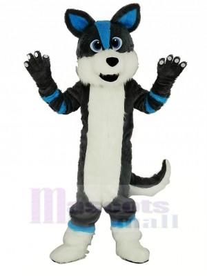 Niedlich Grau und Blau Heiser Hund Fursuit Maskottchen Kostüm Karikatur