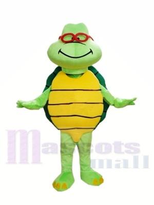 Günstige Green Turtle Custom Maskottchen Kostüme