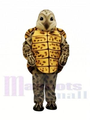 Beschmutzter Dosenschildkröte-Leichtgewichtler Maskottchen Kostüme