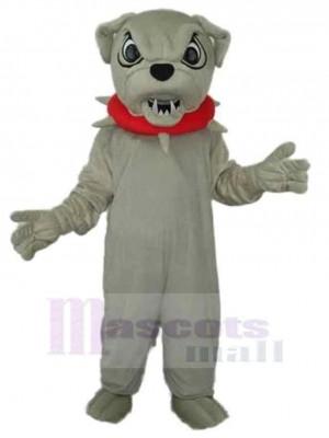 Wütender grauer Hund  Maskottchen Kostüm Tier