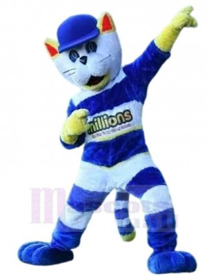 Cappie die Katze Maskottchen Kostüm Tier mit blauem Hut