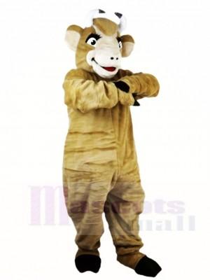 Stier Yak Vieh Ochsen Maskottchen kostüme Tier