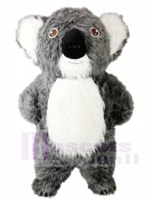 Graues Koala Bär Maskottchen Kostüme Tier