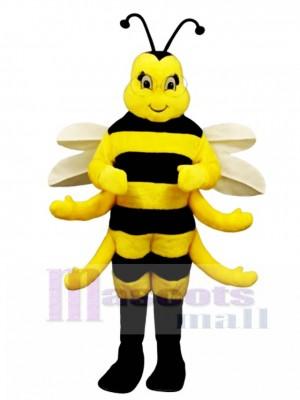 Königliches Bienen Maskottchen Kostüm