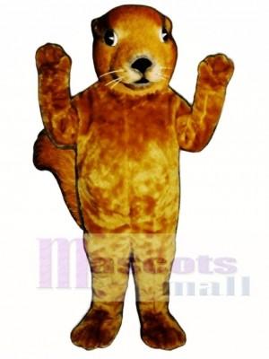 Realistisches Eichhörnchen Maskottchen Kostüm