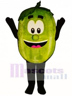 Wally Watermelon Maskottchen Kostüm Obst
