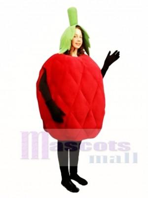 Himbeer Maskottchen Kostüm Obst