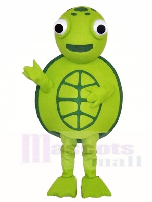 Grün Meer Schildkröte Maskottchen Kostüme Ozean