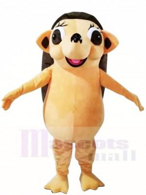 Igel Maskottchen Kostüme Tier