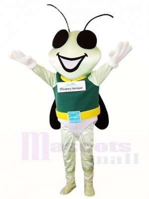Firefly Maskottchen Kostüme Insekt