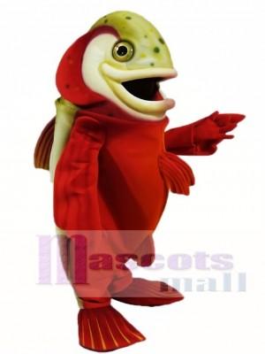 rot Arktis Verkohlen Maskottchen Kostüme Fisch