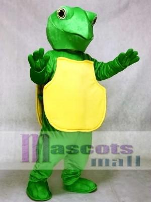Grüne Schildkröte Maskottchen Kostüm Ozean